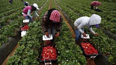 """Economista acredita que os modelos de negócios que levam a """"crescimento mais inclusivo e sustentável"""" devem ser priorizados"""