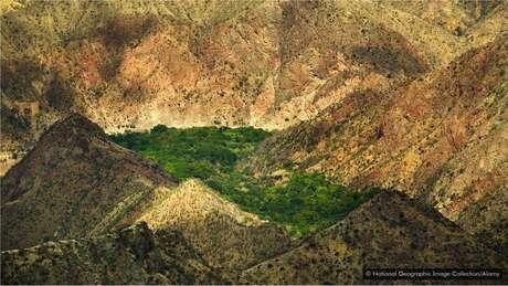 O cânion do rio Marañón impediu um pequeno grupo de cacaueiros de ser dizimado por uma praga na lavoura
