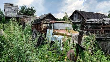 Muitas zonas de Chernobyl agora estão cheias de vegetação