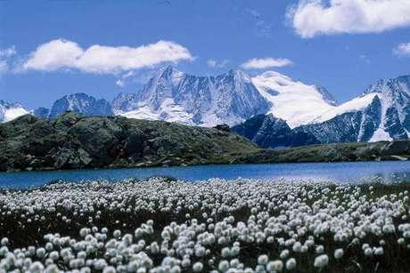 Trentino-Alto Ádige ficou na 1ª colocação do ranking com 113,6 pontos