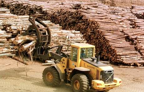 A fábrica da Klabin, em Telêmaco Borba, no Paraná, é um dos complexos industriais da companhia