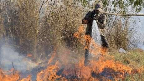 Bombeiro apaga incêndio no Pantanal; bioma já tem recorde de queimadas neste ano