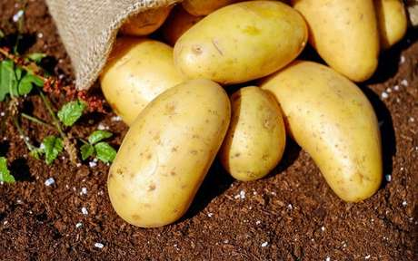 Descubra como fazer simpatias com batatas -