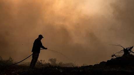 Brigadistas atuam no combate ao fogo no Pantanal