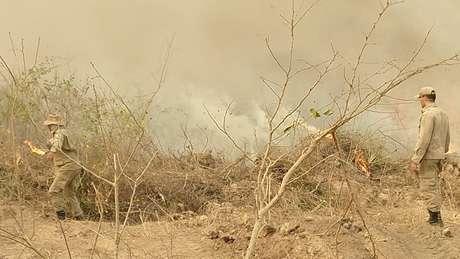 Segundo especialista, queimadas devem diminuir somente após intensas chuvas no bioma