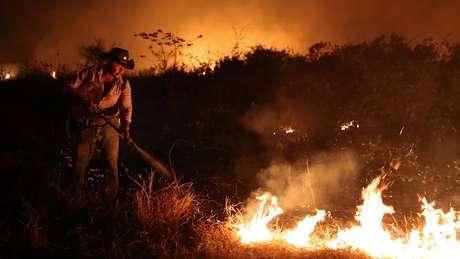Atualmente as maiores ameaças das onças-pintadas são as queimadas na Amazônia e no Pantanal, principais refúgios da espécie.
