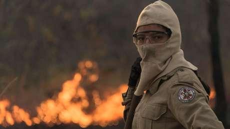 Ainda não se sabe quantos animais foram ou podem ser afetados pelo fogo que avança pelo Pantanal