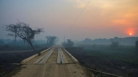 Para especialistas, principal forma de controlar as chamas no Pantanal será por meio de chuvas durante alguns dias