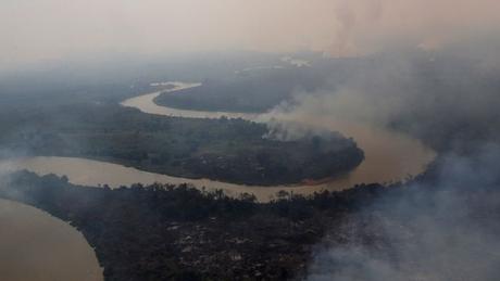 Cenário no Pantanal nos últimos dois meses é de devastação