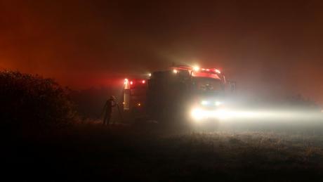 Pesquisadores acreditam que autoridades demoraram a agir contra os incêndios