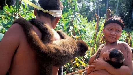 Contato com tribos isoladas tornou-se basicamente proibido no Brasil desde década de 1980
