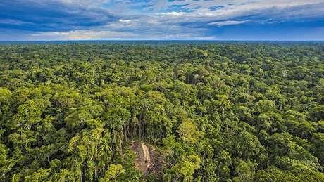 Desmatamento na Amazônia é significativamente menor nas reservas indígenas