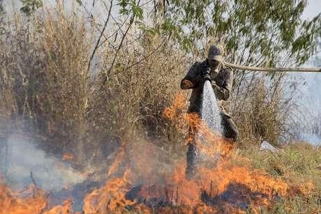 Fogo no Pantanal; Bolsonaro deve discursar afirmando que queimadas são processos naturais