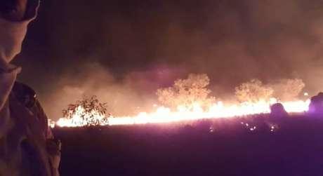 Em vídeo enviado à reportagem, morador é visto combatendo o fogo na Mata do Mamão, interior da Ilha do Bananal