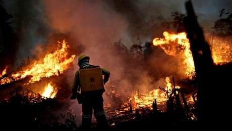 Seca e degradação intensificam os incêndios na Amazônia, diz Carlos Nobre