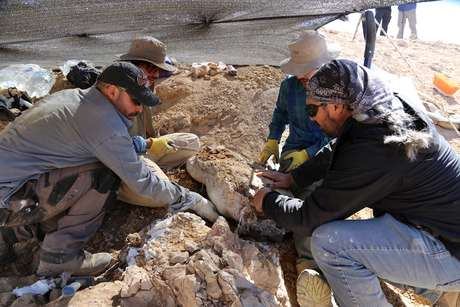 Cientistas se preparam para retirar restos de um dos maiores predadores marinhos do período Jurássico, no deserto do Atacama, no Chile. 14/12/2018. Mauricio Castro/Handout via REUTERS