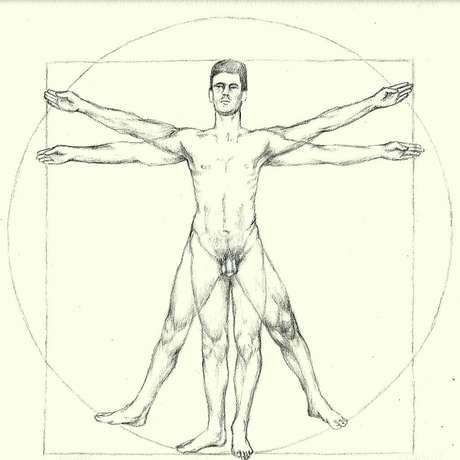 O corpo humano ideal de Leonardo da Vinci e as proporções obtidas com as medidas contemporâneas froam semelhantes