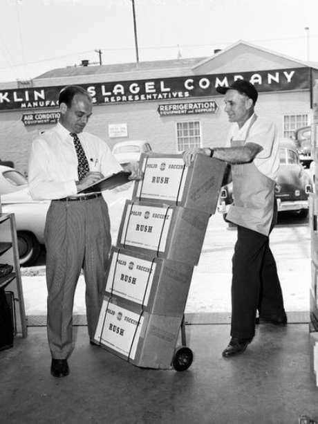 A partir de 1955, a incidência de pólio nos EUA caiu drasticamente