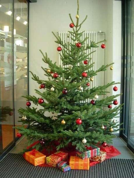 64- Segundo a tradição o pinheiro de natal deve ser desfeito no dia 6 de janeiro. Fonte: Com a Mala na Garupa