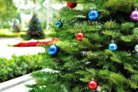 25- O pinheiro de natal natural pode ser encontrado em feiras ou gardens. Fonte: Pinterest
