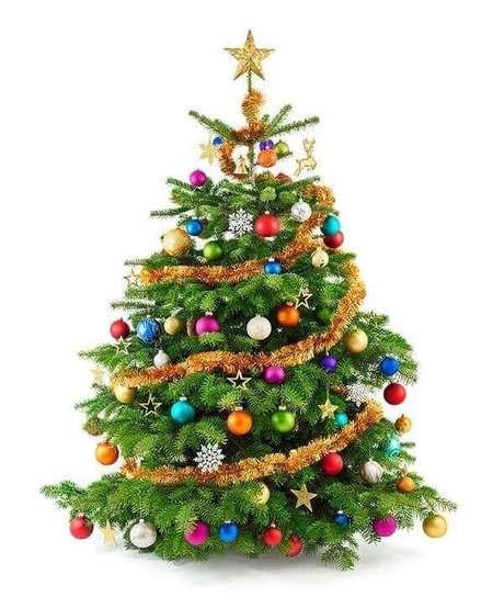 11- Os enfeites coloridos para pinheiro de natal são encontrados em lojas especializadas no ramo. Fonte: Jornal Nossa Gente