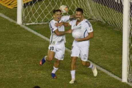 Santos pode ter Libertadores diferente em 2020 (Foto: Twitter/Santos)