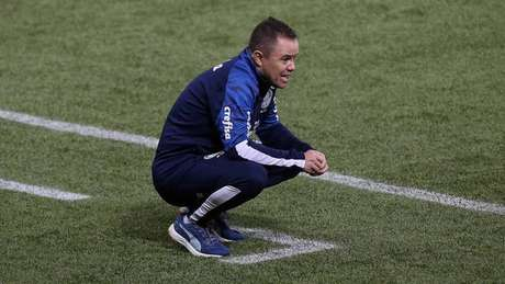 Andrey Lopes é o técnico interino da equipe palmeirense (Foto: César Greco/Ag. Palmeiras)