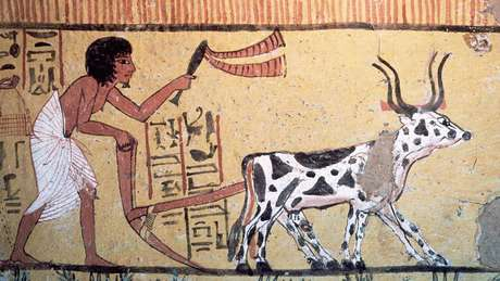 Um passo em falso na revolução agrícola e o futuro de nossa civilização teria sido muito diferente