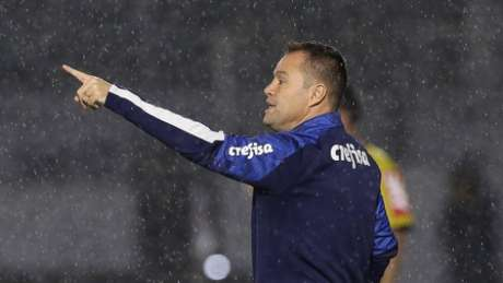 Andrey Lopes comandou o Palmeiras em mais uma vitória (Foto: Cesar Greco/Palmeiras)