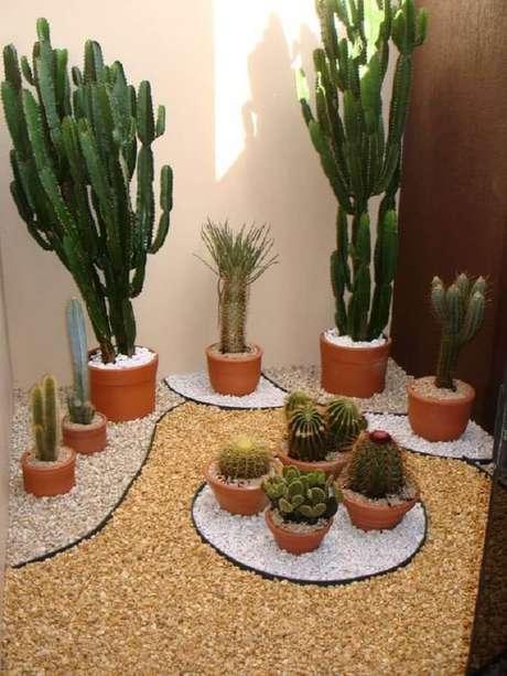 3. Cactos e suculentas são ótimas plantas para varanda com sol – Foto: Muito Chique