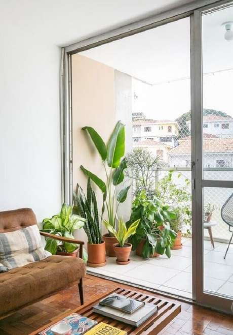 51. Vasos de plantas para varanda de casa – Foto: Histórias de Casa