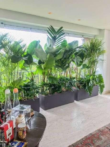 53. Decoração com grandes plantas para varanda de apartamento – Foto: Casa de Valentina