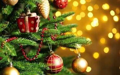 Árvore de Natal: saiba qual é a data certa para começar as decorações