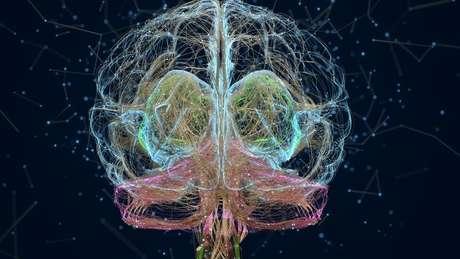 Nossa mente é muito mais do que um processador de informações