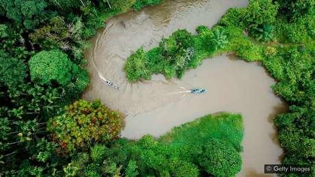 Preservar grandes extensões de terra pode ajudar a estabilizar ecossistemas vitais, como florestas tropicais, que atuam como reservatórios de carbono