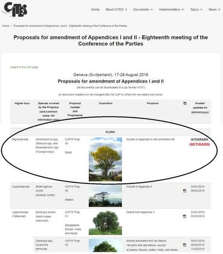 Registro mostra pedido de retirada do ipê de lista de espécies ameaçadas feito pelo governo brasileiro à convenção Cites