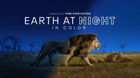 Earth at Night in Color (Imagem: Reprodução / Apple TV+)