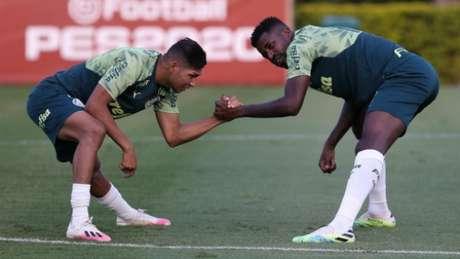 Rony afirmou que elenco vai sentir falta de Ramires (Foto: Cesar Greco/Palmeiras)