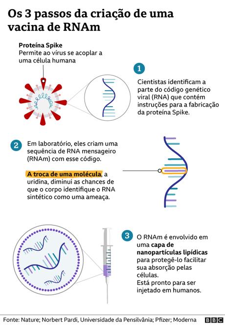 Gráfico de como se fez a vacina de RNAm