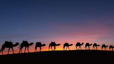 As caravanas da empresa de Cadija e da família dela viajaram longas distâncias no Oriente Médio