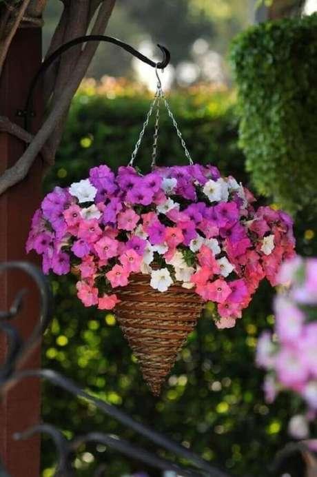 20. As petúnias são flores para vaso suspenso. Fonte: Pinterest