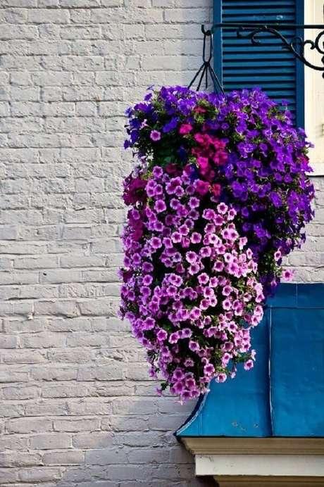 6. As petúnias são flores perfeitas para vasos suspensos. Fonte: Pinterest