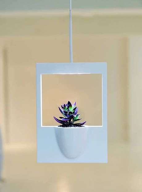 30. Cultive suas suculentas em vasos para jardim suspenso. Fonte: Pinterest