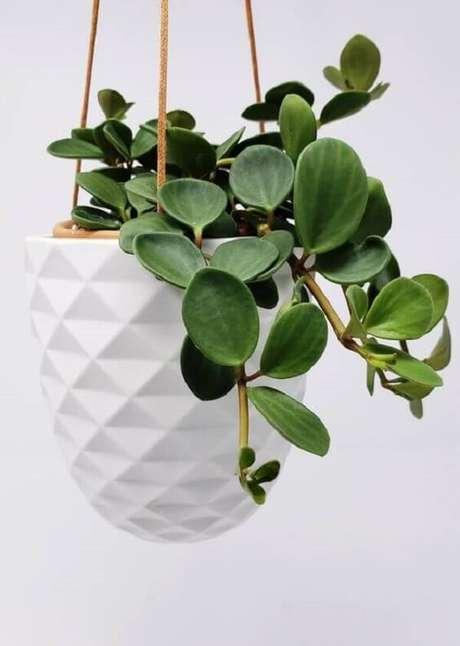 19. Modelo de vaso suspenso branco e delicado. Fonte: Jessica Lomasi
