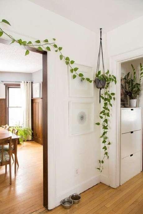 53. Vaso de planta suspenso com a planta jiboia. Fonte: Pinterest