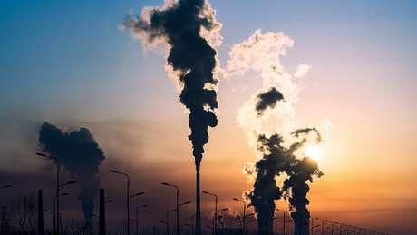 Cuando la economía industrial crece, los ecosistemas se destruyen, dice el economista ecológico