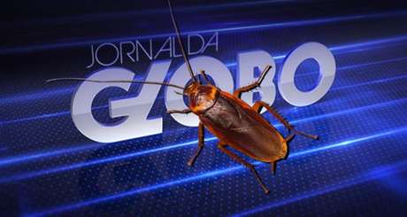 Olha a baratinha! Na época, o inseto intrometido no 'Jornal da Globo' virou notícia na imprensa
