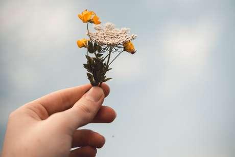 Ho'oponopono ajuda quem tem dificuldades de perdoar
