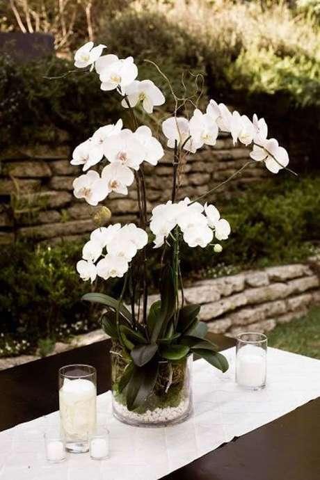 12. Vaso de orquídea de vidro – Via: Como fazer em casa