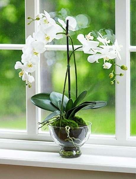 13. Vaso de orquídea de vidro – Via: Country Living